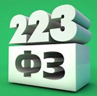 Публично-правовые компании должны осуществлять закупки по 223-ФЗ